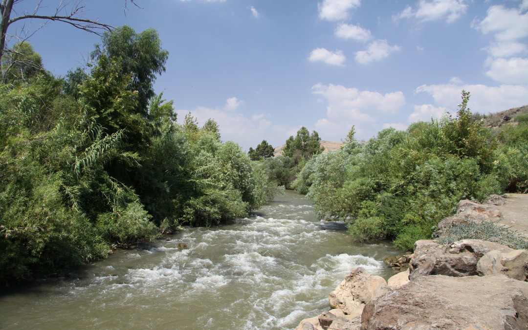 Flowing Water in the Psalms