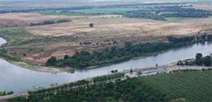 riparian_sanctuary_1_380, Sacramento River