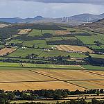 Greg Clarke, Irish farm, via Flickr