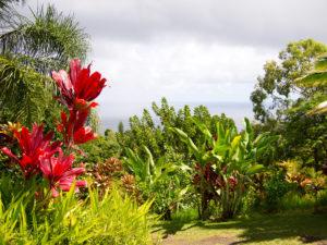 Garden of Eden, Maui, Yimmy149 via Flickr
