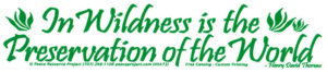 Wilderness quotation bumper sticker