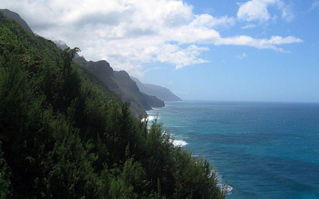 Ambiance: Windy Jungle in Kauai