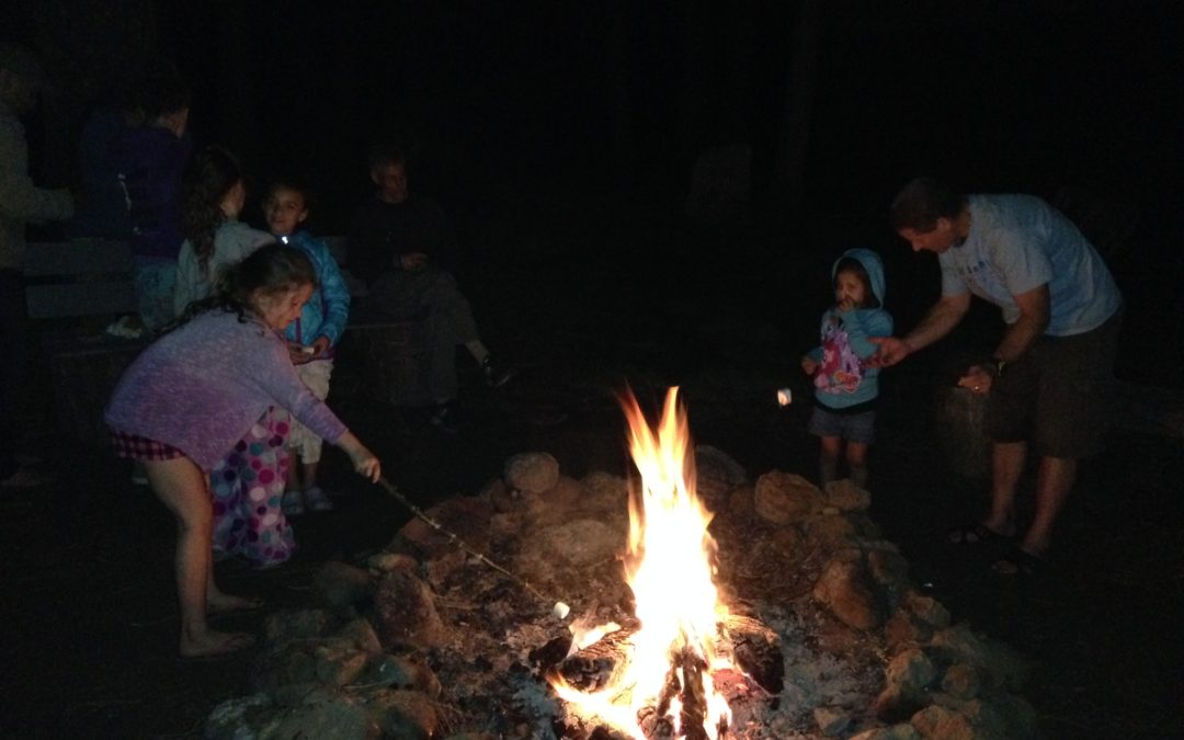 campfire in Mill Creek, California