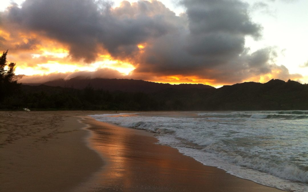 Hawaiian beach at Sunset, Elisheva Danan