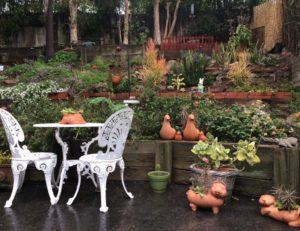 Garden View, Santa Monica, Peg Schultz-Akerson