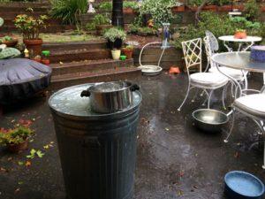 Garden Rain collection