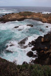 Point Lobos, California, Elisheva Danan