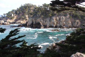 Point Lobos, Pacific Ocean, Elisheva Danan