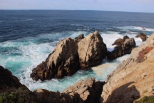 Point Lobos, Elisheva Danan
