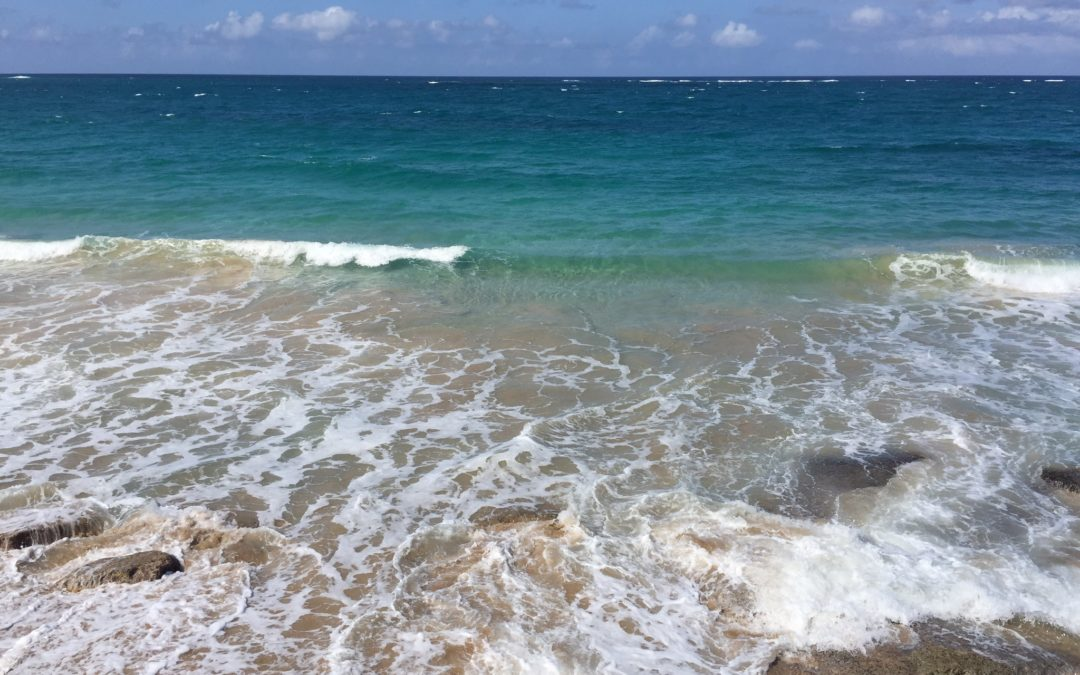Waves on beach in Puerto Rico, JHD