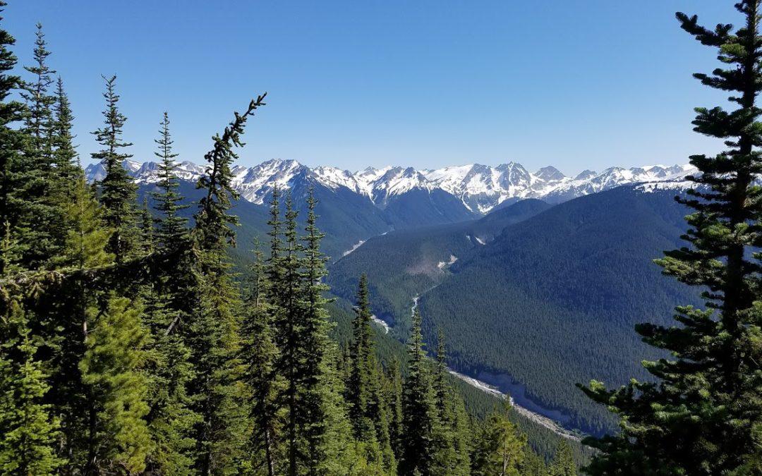 Cascades, Charles Danan