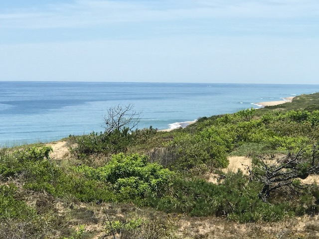 Cape Cod National Seashore, above Marconi Beach, JHD