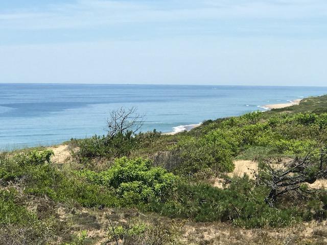Cape Cod National Seashore, above Marconi Beach, JHD