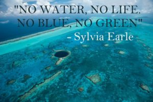 """No Green, No Blue,"" Sylvia Earl, Oceanographer"