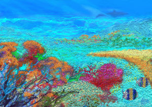 Coral, Simon Roberts