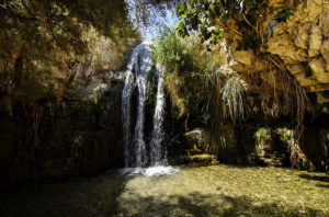 Ein Gedi, Boris Kasimov via Flickr