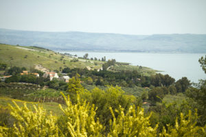 Sea of Galilee, Israel Tourism
