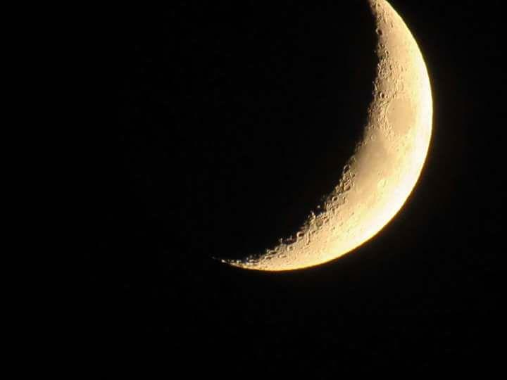 Moon, Niculina Archer