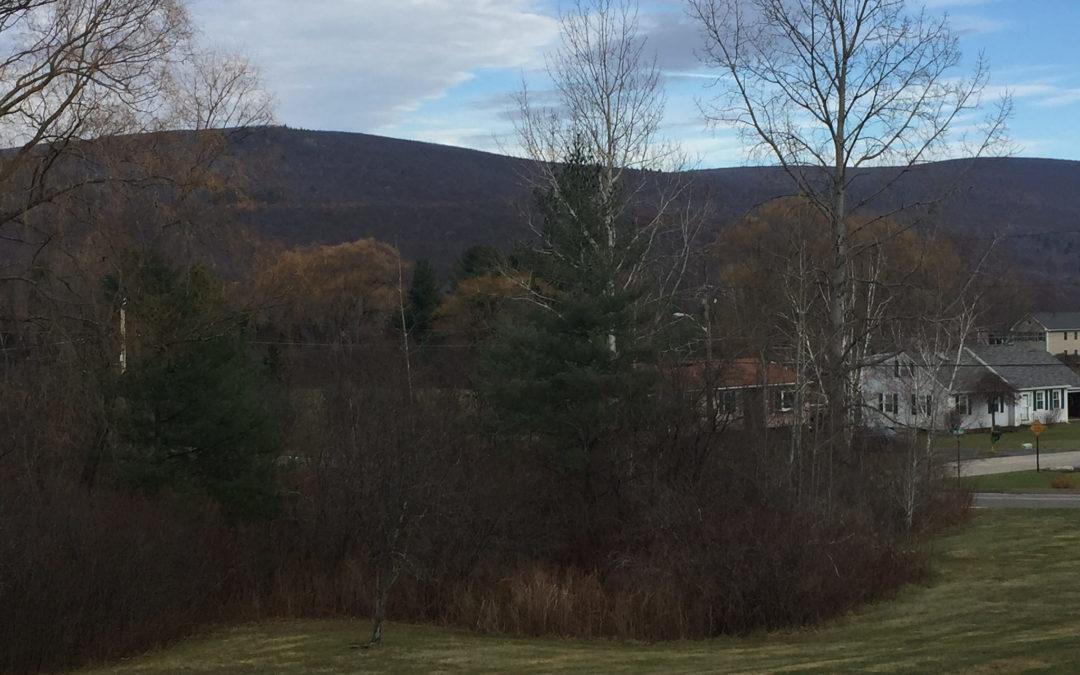 Berkshires in Late Fall, Rabbi Rachel Barenblat