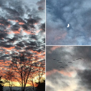 December Sunset, Moon and Geese, JHD