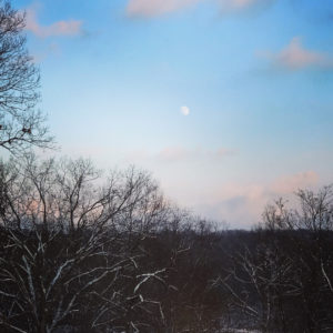 Winter Moonrise at Rockefeller State Park Preserve, JHD