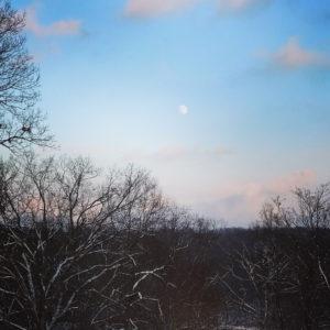 Winter Moonrise at Rockefeller State Park Preserve, JHD