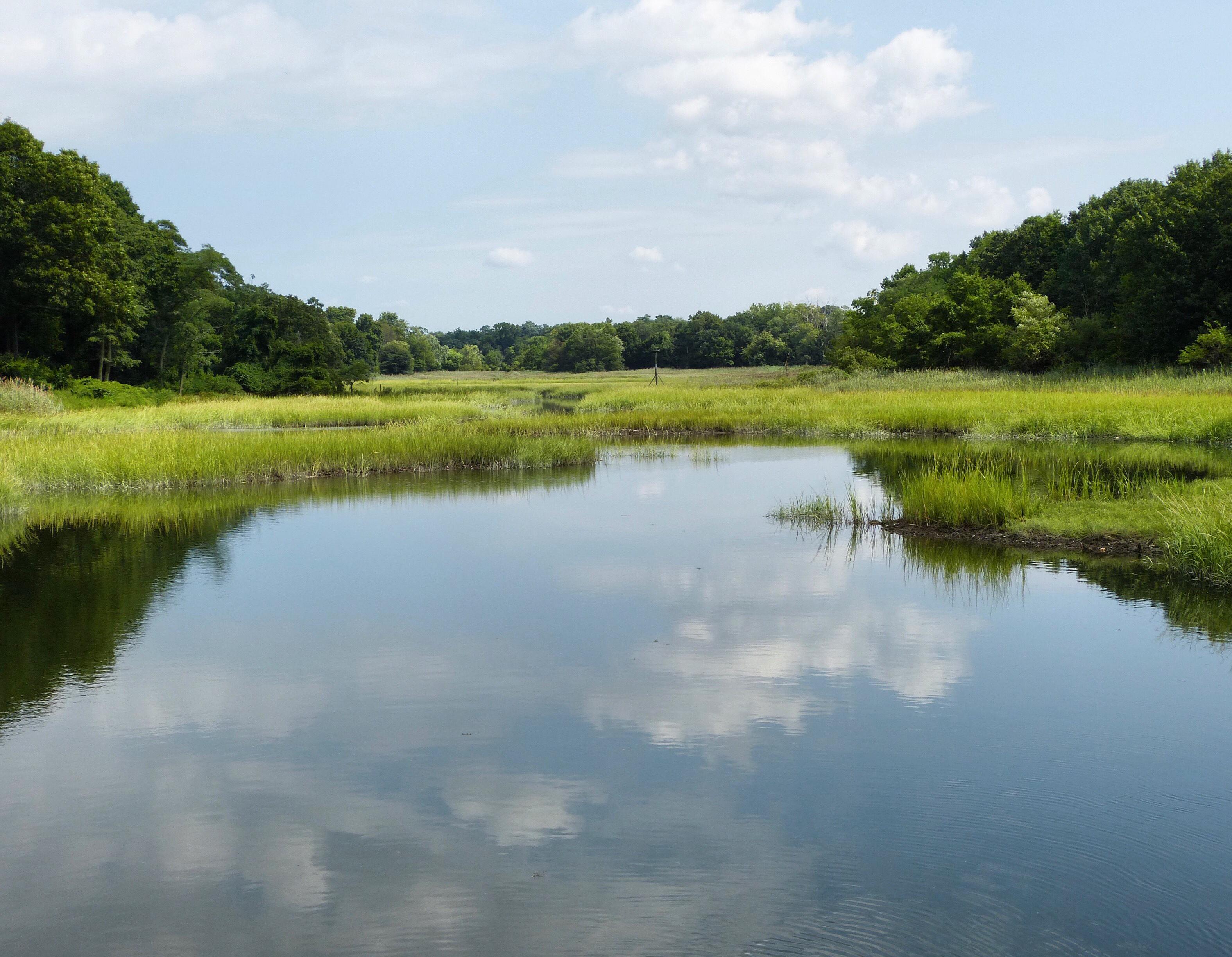 Otter Creek, JHD