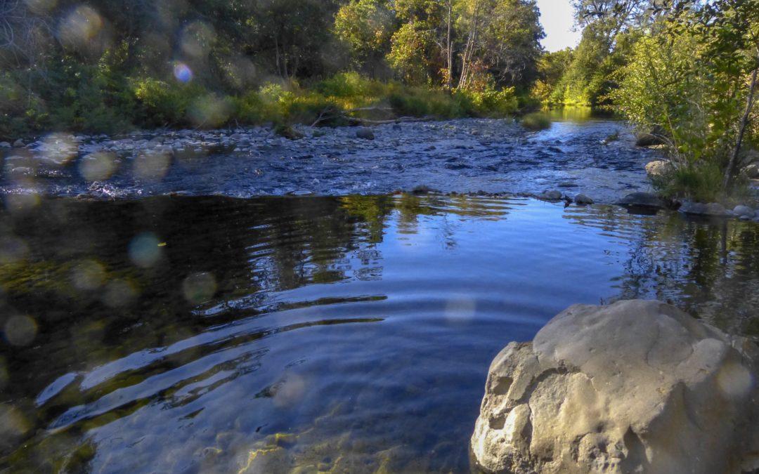 Upper Bidwell Park, Chico, California, 2018, JHD