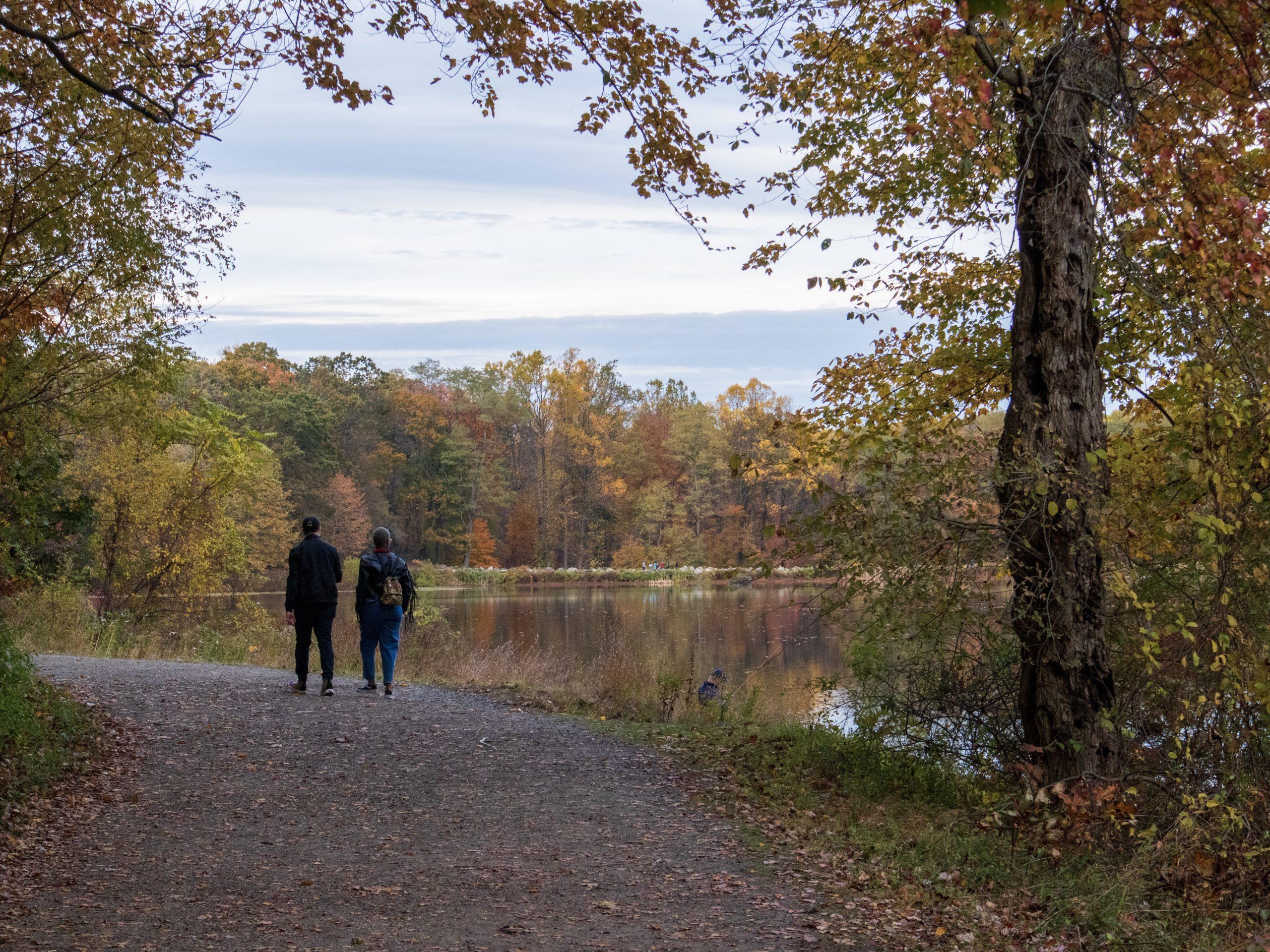 Walkers at Rockefeller State Park Preserve